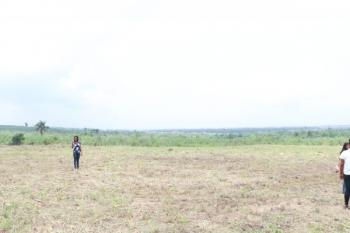 Land with Survey and C of O, Royalty Garden, By New Rccg  Km By 3km Auditorium, Simawa, Ogun, Residential Land for Sale