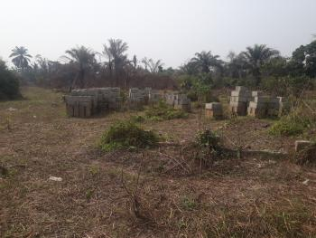 Industrial and Commercial Land, Agric, Ikorodu, Lagos, Mixed-use Land for Sale