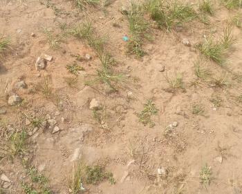 12 Plots of Land, Festac, Badagry, Lagos, Mixed-use Land for Sale