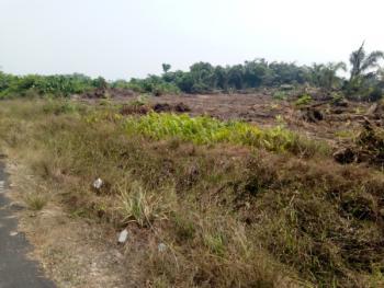 Land, Northbrooks Estate, Opposite Christopher University, Mowe Ofada, Ogun, Mixed-use Land for Sale
