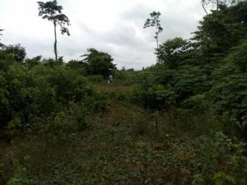 Giveaway Offer. 4 Plots of Land., Benin- Auchi Way, Oluku- Aduwawa Bypass, Benin, Uhunmwonde, Edo, Mixed-use Land for Sale