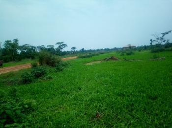 Land, Opebi Link Road, Opebi, Ikeja, Lagos, Mixed-use Land for Sale