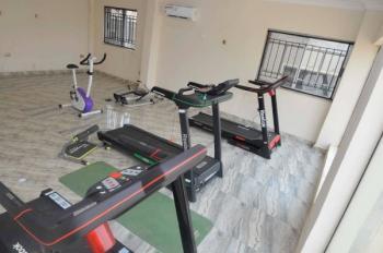 Royal Signature Suites and App, Rd 19a, Plot Xvii Bashorun Estate, Behind I.d.c Primary School,(opp, Akobo, Ibadan, Oyo, Mini Flat Short Let