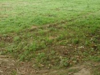 Land Measuring 700sqm, Aguda, Surulere, Lagos, Mixed-use Land for Sale