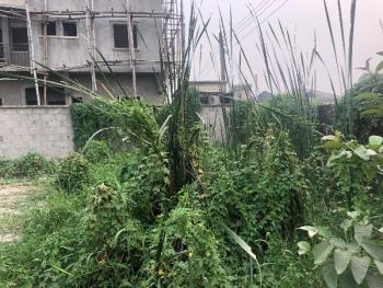 Landed Property, Happy Land Estate, Olokonla, Ajah, Lagos, Residential Land for Sale