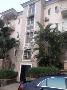 Beautifully Serviced 2 Bedroom Flat Ideally for Vips, Maitama, Maitama District, Abuja, Flat for Rent