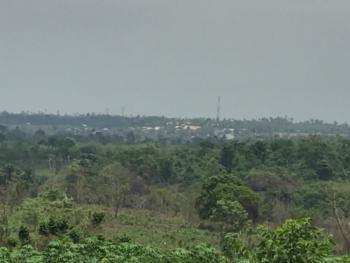 Acres of Land, Olodo, Odeda, Ogun, Commercial Land for Sale