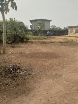 12 Nos of Mini - Flat Bungalow on 2 Plot of Land, Shogbesan Street Awelu Area Off Ait Road Alagbado Lagos, Alagbado, Ifako-ijaiye, Lagos, Residential Land for Sale