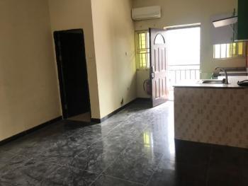 Lovely and Spacious Mini Flat, Agungi, Lekki, Lagos, Mini Flat for Rent