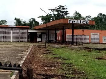 a Petrol Filling Station  Sitting on a 6 Plots of Land, Along Ibadan Express Way, Challenge, Ibadan, Oyo, Filling Station for Sale