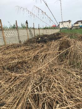 Land, Ado, Ajah, Lagos, Commercial Land for Rent