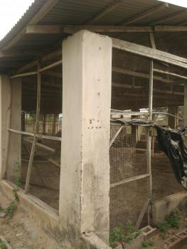 Fish Pond and Poultry Farm, Gudugba Village Off Abeokuta Express Road ,ifo Ogun State, Ifo, Ogun, Factory for Sale