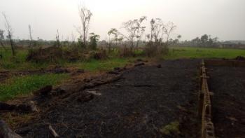 3 Plot of Land Facing New Express Road, Igbogene-bayelsa Palm New Expressway, Yenagoa, Bayelsa, Mixed-use Land for Sale