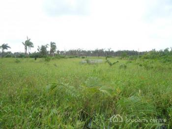 54.24 Hectares, Mixed Use-comprehensive Development  (c of O), Near Good Luck Jonathans Farms, Aviation Village, Kyami, Abuja, Mixed-use Land for Sale