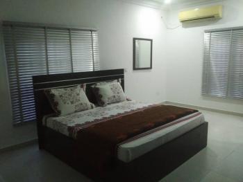 Luxury Spacious Apartments with 24hrs Power, Odudu Eleyiwo Road, Oniru, Victoria Island (vi), Lagos, Flat Short Let