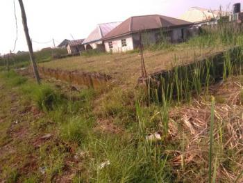 Half Plot of Land, at Back of Star House, Satellite Town, Ojo, Lagos, Land for Sale