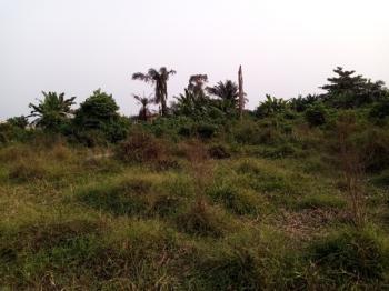 Affordable Land, Prime Gardens Phase 2, Mafogunde, Ibeju Lekki, Lagos, Residential Land for Sale