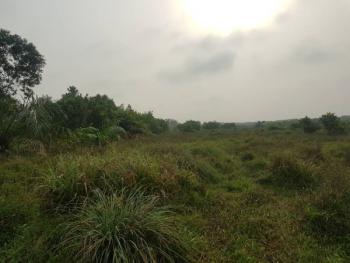 Gazette  20 Hectares Land, Igando Oloja, Ibeju Lekki Local Government Area, Before Eleko, Eleko, Ibeju Lekki, Lagos, Mixed-use Land for Sale