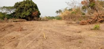 Estate Land with Durable Road Construction, Electricity, Security, Alexandra Estate, Behind Premiere Layout Dunamis, Independence Layout, Enugu, Enugu, Residential Land for Sale