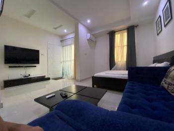 Limitless Style and Quality Living. It Starts Here, Ikate Elegushi, Lekki, Lagos, Flat Short Let