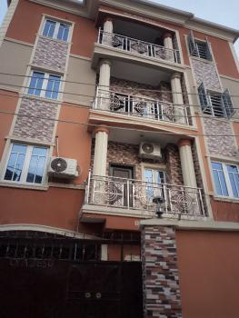 Super and Executive 2 Bedroom Flat, All Ensuite, Off Apapa Raod Costain, Iponri, Surulere, Lagos, Flat for Rent
