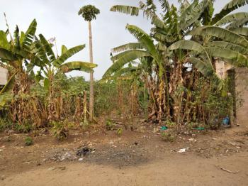 Two Plots of Empty Land with Surrounding Built-up, Irrete in Owerri West L G a, Owerri West, Imo, Residential Land for Sale