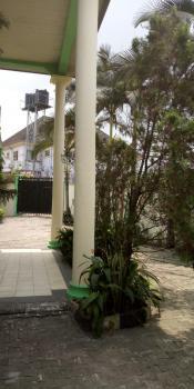 Massive 4 Bedroom Duplex with Lovely Finishing, 4th Avenue Off Rumuibekwe Estate Extension, Rumuibekwe, Port Harcourt, Rivers, Detached Duplex for Rent
