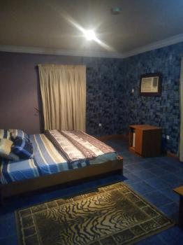 Serviced and Furnished Spacious  Studio Apartment (negotiable), Zone 5, Wuse, Abuja, Self Contained (single Rooms) Short Let