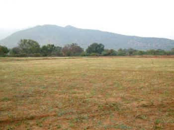 1.35 Hectare (plot No:2647), Maitama District, Abuja, Land for Sale