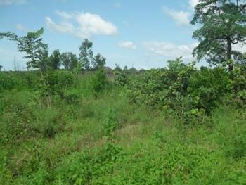 a Plot of 600sqm Land, Bariga, Shomolu, Lagos, Residential Land for Sale