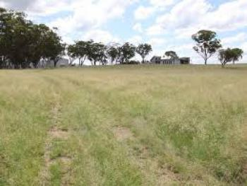 Prime Land with Cofo, Alero, Maitama District, Abuja, Land for Sale