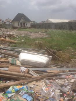 Sweet Land, Lekki Road, Lekki Phase 1, Lekki, Lagos, Commercial Land for Rent