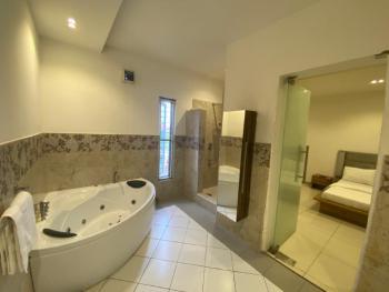 a Brand New 2 Bedroom Fully Furnished Apartment, Lekki Phase 1, Lekki, Lagos, Flat Short Let