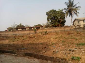 Dry and Table Land Available for Commercial Use in a Residential Area., Ajipowo Road,along Custom Bus Stop., Akure, Ondo, Residential Land for Rent