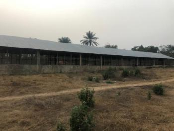 a Poultry Farm on 4 Acres of Land, Badeku Community, Off Ife Road , After Egbeda, Ibadan., Ibadan, Oyo, Commercial Property for Sale