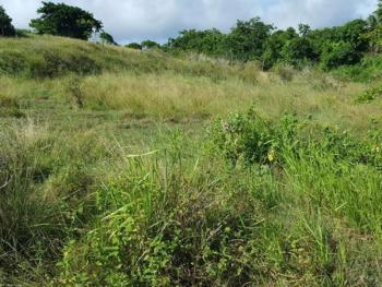 Corner Piece Land Measuring 1,000sqm, Banana Island, Ikoyi, Lagos, Residential Land for Sale