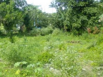 a Corner Piece Land Measuring 938sqm, Banana Island, Ikoyi, Lagos, Residential Land for Sale