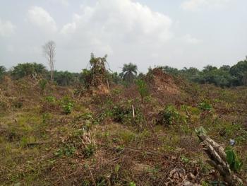 Dry Land, Zion Garden Estate Ibeku Lekki, Mafogunde, Ibeju Lekki, Lagos, Mixed-use Land for Sale