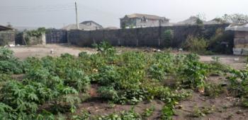 Distress Auction Dry Plot of Land with Cofo, Okunajah, Lekki Phase 2, Lekki, Lagos, Residential Land for Sale