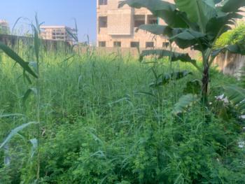 537sqm Land, Off Omorinre Johnson Street, Lekki Phase 1, Lekki, Lagos, Mixed-use Land for Sale