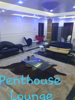 Brand New 42rooms Hotel on 3000sqm of Land, Kwara Street., Osborne, Ikoyi, Lagos, Hotel / Guest House for Sale