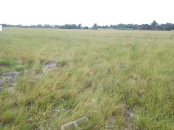 Money Making Affordable Dry Land with High Return on Investment, Few Minutes Drive After The Prestigious La Campaigne Tropicana Beach, Asegun, Ibeju Lekki, Lagos, Residential Land for Sale