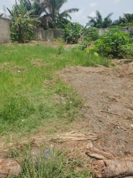 a Plot of Dry Land, Behind Lagos Business School, Sangotedo, Lekki Expressway, Lekki, Lagos, Residential Land for Sale