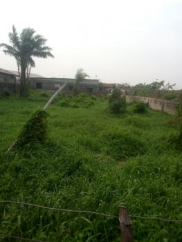 Dry Land in a Good Location, Ajah, Lagos, Land for Sale