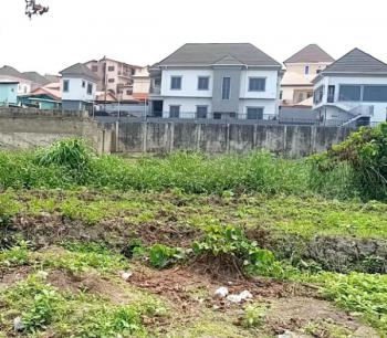 Plot and Acres Berry Court Phase 2, Behind Magodo Brooks, Omole Phase 2, Gra, Magodo, Lagos, Mixed-use Land for Sale