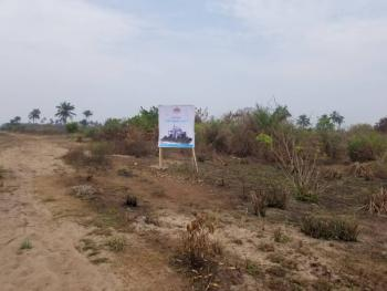 Newly Launched Well Sectioned Dry Land with C of O, Olomowewe Community, Free Trade Zone, Akodo Ise, Ibeju Lekki, Lagos, Mixed-use Land for Sale