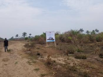 Newly Launched Dry Land with C of O, Olomowewe Community, Free Trade Zone, Akodo Ise, Ibeju Lekki, Lagos, Residential Land for Sale