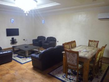 Top Notch, Well Finished and Spacious One Bedroom Apartment Furnished, Asokoro District, Asokoro District, Abuja, Mini Flat for Rent