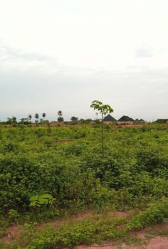 2.99 Hecters of Land, Mpape Junction Beside Rahamaniyya Filling Station, Maitama District, Abuja, Mixed-use Land for Sale