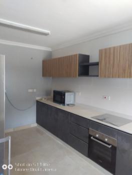 Newly Built 4 Bedroom Terraced Duplex Plus a Room Bq, Old Ikoyi, Ikoyi, Lagos, Terraced Duplex for Rent
